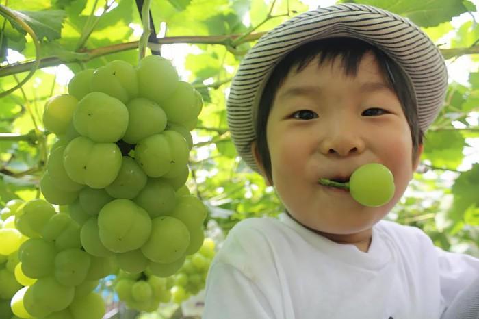 田口ファミリー果樹園